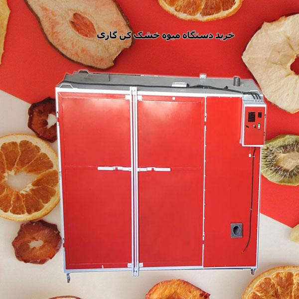 خرید دستگاه میوه و سبزی خشک کن گازی